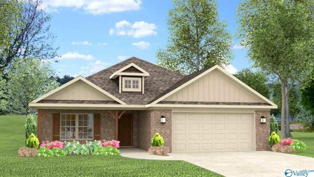 24 Beaver Brook Place, Toney, AL 35773 (MLS #1117067) :: Intero Real Estate Services Huntsville