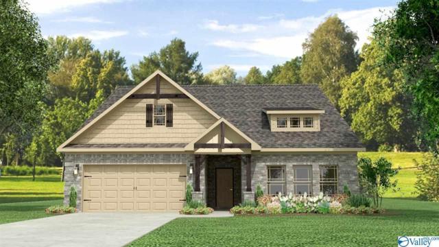 26 Beaver Brook Place, Toney, AL 35773 (MLS #1117099) :: Intero Real Estate Services Huntsville