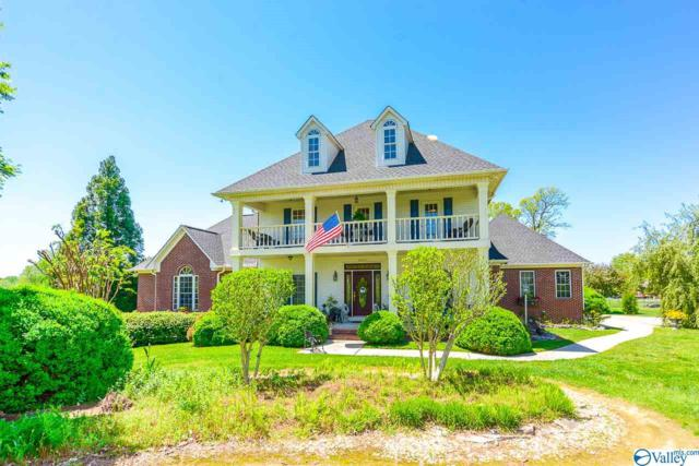 12465 Pulaski Pike, Toney, AL 35773 (MLS #1117170) :: Legend Realty