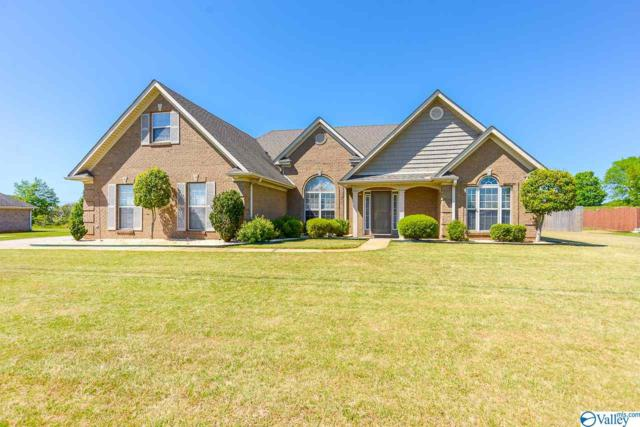 24801 Mahalo Circle, Madison, AL 35756 (MLS #1117179) :: Legend Realty
