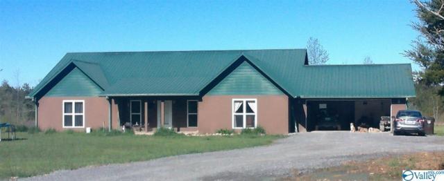 1221 County Road 681, Flat Rock, AL 35966 (MLS #1117492) :: Weiss Lake Alabama Real Estate
