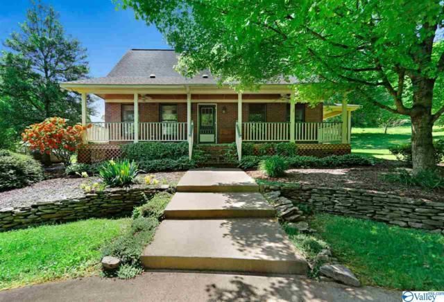 1213 Old Elkton Pike, Dellrose, TN 38453 (MLS #1117562) :: Legend Realty