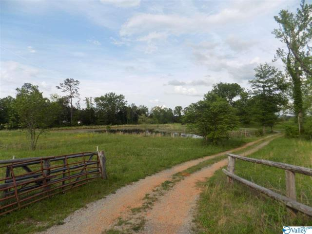 0 Six Mile Creek Road, Somerville, AL 35670 (MLS #1117810) :: RE/MAX Distinctive | Lowrey Team
