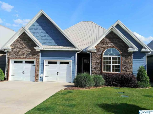 141 Willow Point Drive, Ohatchee, AL 36271 (MLS #1117901) :: Eric Cady Real Estate