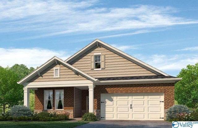 285 Falcon Ridge Drive, New Market, AL 35761 (MLS #1117947) :: Amanda Howard Sotheby's International Realty