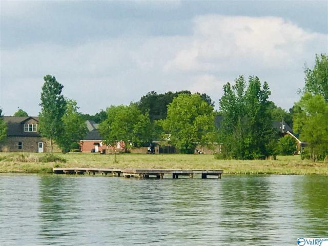 1241 Meadowlake Drive, Southside, AL 35907 (MLS #1117966) :: Amanda Howard Sotheby's International Realty