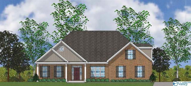 107 Seattle Slew Drive, Madison, AL 35756 (MLS #1118134) :: Intero Real Estate Services Huntsville