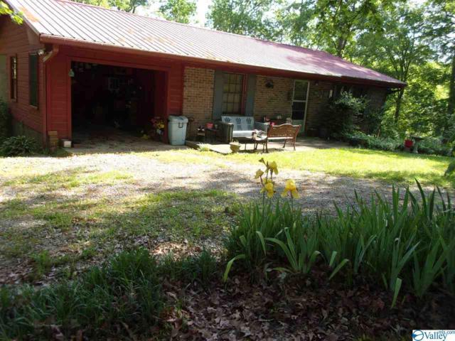 630 County Road 616, Cedar Bluff, AL 35959 (MLS #1118166) :: Legend Realty