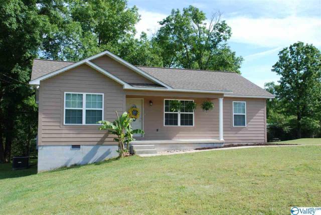 492 Mitchell Drive, Rainsville, AL 35986 (MLS #1118225) :: Capstone Realty
