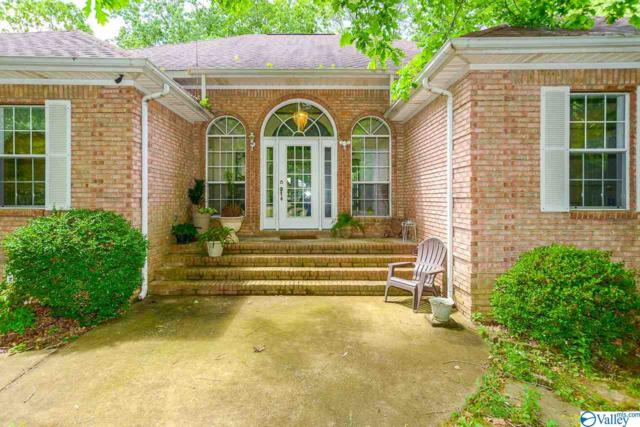 28541 Jessica Drive, Toney, AL 35773 (MLS #1118276) :: Legend Realty