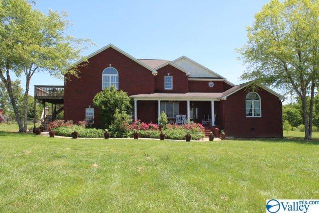 465 County Road 28, Geraldine, AL 35974 (MLS #1118296) :: Intero Real Estate Services Huntsville