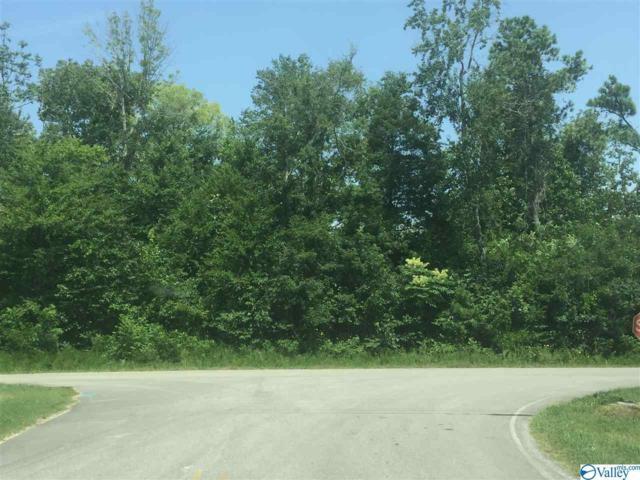 0000 Bluff City Road, Somerville, AL 35670 (MLS #1118317) :: RE/MAX Distinctive | Lowrey Team