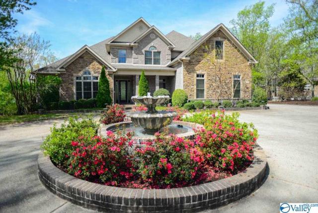 205 Stoneway Trail, Madison, AL 35758 (MLS #1118366) :: Intero Real Estate Services Huntsville