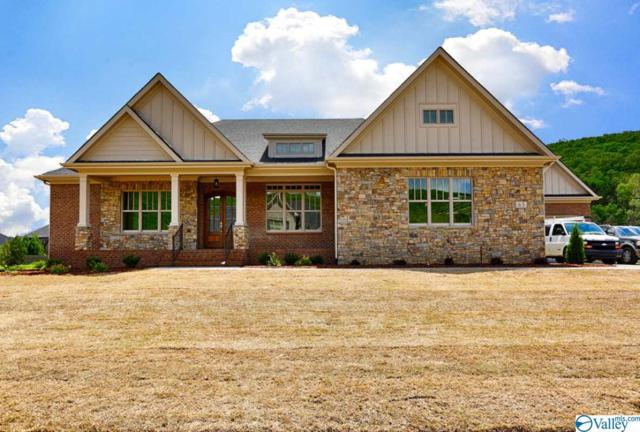 65 Mcmullen Lane, Gurley, AL 35748 (MLS #1118384) :: The Pugh Group RE/MAX Alliance