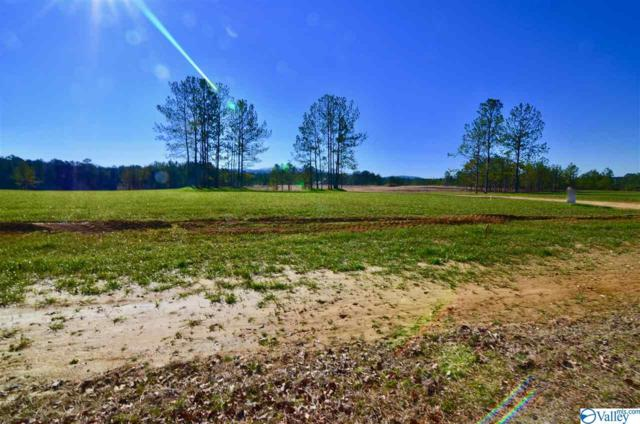 14 Lakeshore, Gadsden, AL 35901 (MLS #1118484) :: MarMac Real Estate