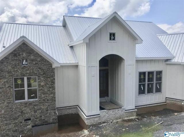 1182 Fall Creek Drive, Guntersville, AL 35976 (MLS #1118509) :: Amanda Howard Sotheby's International Realty