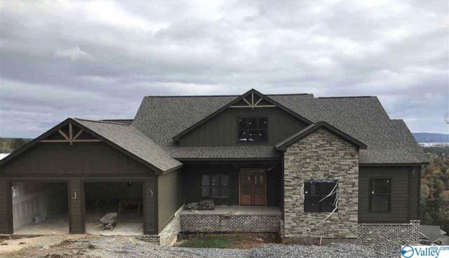 1150 Fall Creek Drive, Guntersville, AL 35976 (MLS #1118543) :: Amanda Howard Sotheby's International Realty