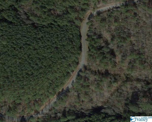 0000 County Road 141, Gaylesville, AL 35973 (MLS #1118706) :: Weiss Lake Realty & Appraisals