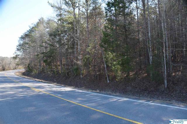 000 Highway 35, Gaylesville, AL 35973 (MLS #1118715) :: Weiss Lake Realty & Appraisals