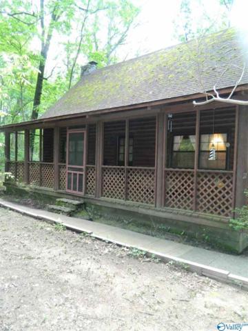 237 Mountain Oak Trail, Somerville, AL 35670 (MLS #1118807) :: Legend Realty