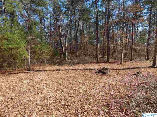 Lot 1 Road 935, Mentone, AL 35984 (MLS #1118808) :: Revolved Realty Madison