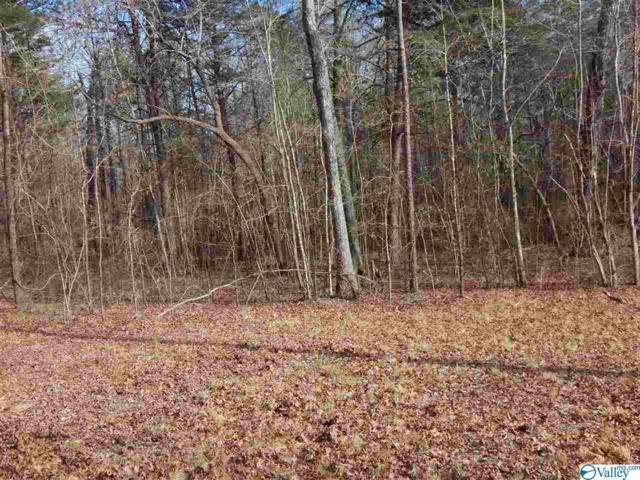 Lot 2 Road 935, Mentone, AL 35984 (MLS #1118810) :: Revolved Realty Madison