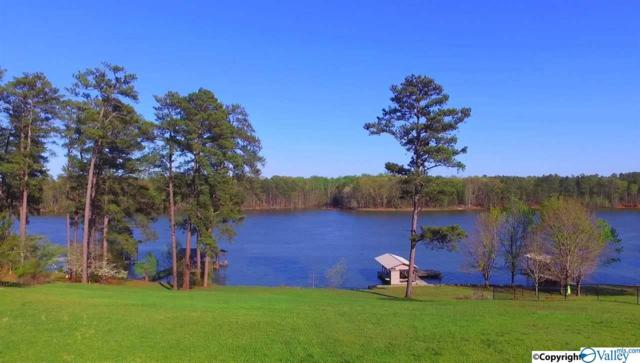 85 County Road 227, Leesburg, AL 35983 (MLS #1118828) :: Weiss Lake Realty & Appraisals