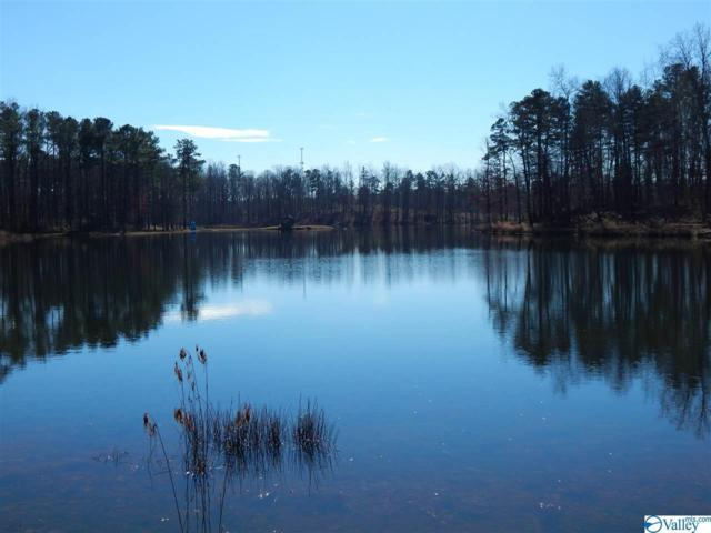 LOT 33 Hidden Lakes Drive, Mentone, AL 35984 (MLS #1118898) :: Legend Realty