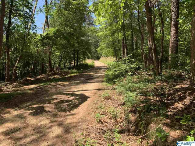 Lot 8, BLK C County Road 387, Leesburg, AL 35983 (MLS #1118921) :: Weiss Lake Realty & Appraisals
