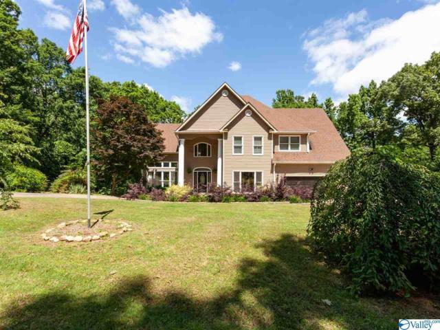 124 Bluff View Drive, Scottsboro, AL 35769 (MLS #1118932) :: Intero Real Estate Services Huntsville