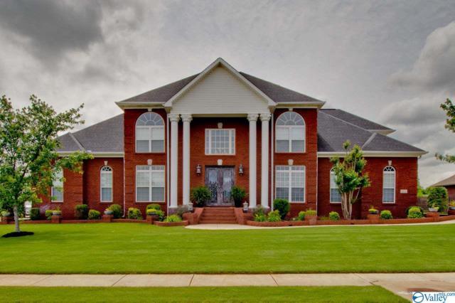 466 Natures Way, Huntsville, AL 35824 (MLS #1119123) :: Capstone Realty