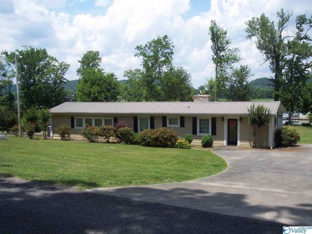 225 County Road 24, Scottsboro, AL 35768 (MLS #1119190) :: Capstone Realty