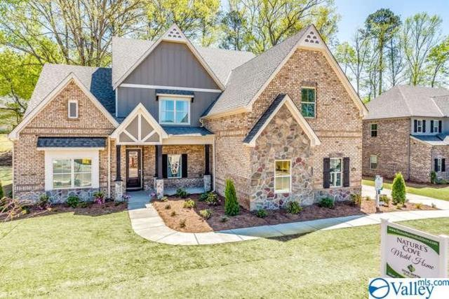 3052 Ginn Point Road, Owens Cross Roads, AL 35763 (MLS #1119261) :: Eric Cady Real Estate
