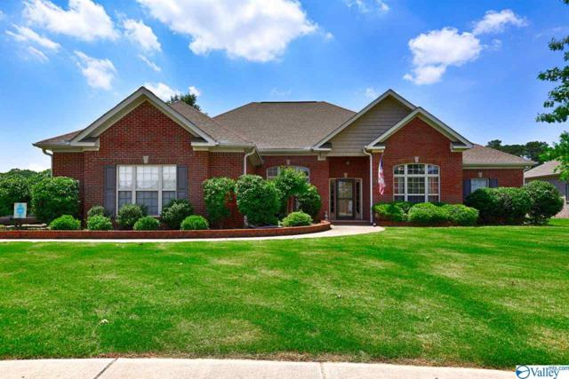 201 Nettles Drive, Madison, AL 35757 (MLS #1119288) :: Amanda Howard Sotheby's International Realty