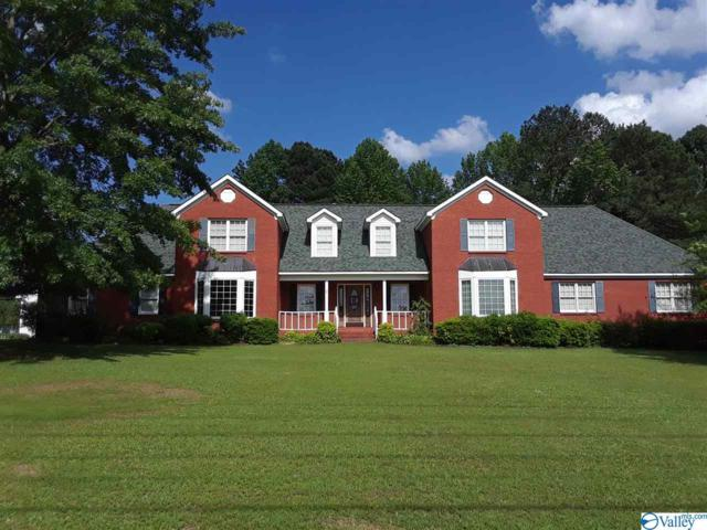 156 Mt Tabor Road, Hartselle, AL 35640 (MLS #1119371) :: Legend Realty