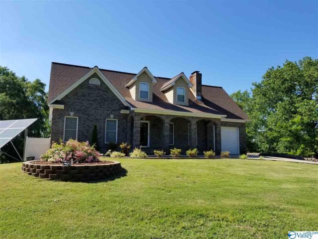 240 Turkey Hollow Road, Ashville, AL 35953 (MLS #1119419) :: Amanda Howard Sotheby's International Realty