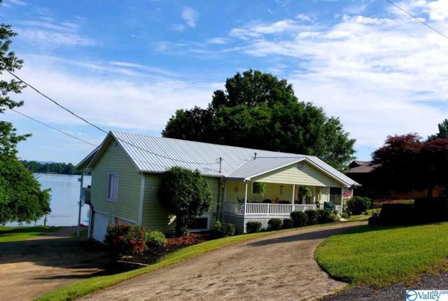 250 County Road 351, Leesburg, AL 35983 (MLS #1119440) :: RE/MAX Distinctive | Lowrey Team