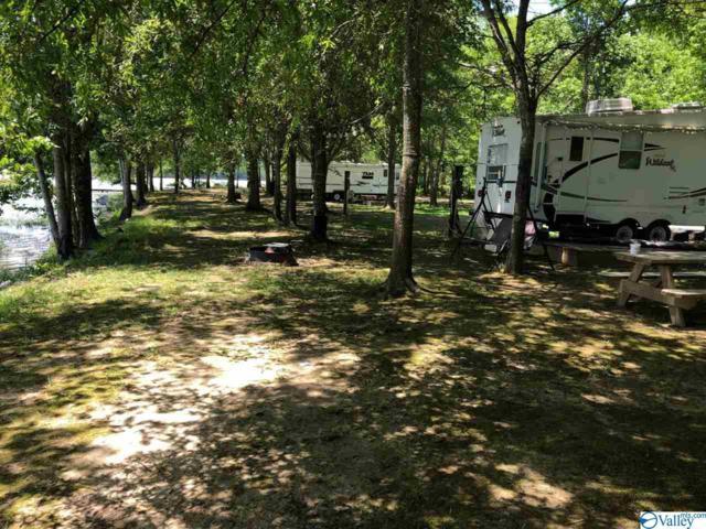 18 County Road 569, Gaylesville, AL 35973 (MLS #1119472) :: Weiss Lake Realty & Appraisals