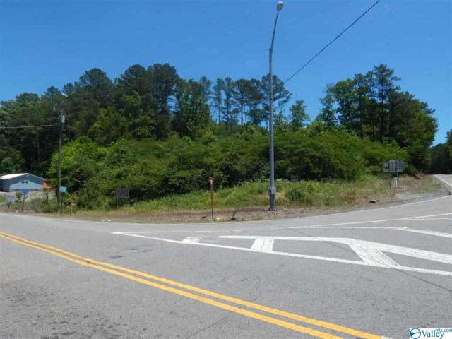 273 Alabama Highway 35, Gaylesville, AL 35973 (MLS #1119523) :: Weiss Lake Realty & Appraisals