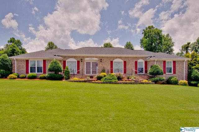 141 Thunderbird Drive, Harvest, AL 35749 (MLS #1119580) :: The Pugh Group RE/MAX Alliance