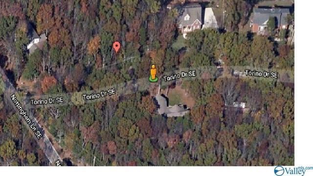9989 Torino Drive, Huntsville, AL 35803 (MLS #1119607) :: Amanda Howard Sotheby's International Realty