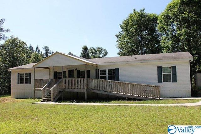 386 County Road 520, Mentone, AL 35984 (MLS #1119654) :: Capstone Realty