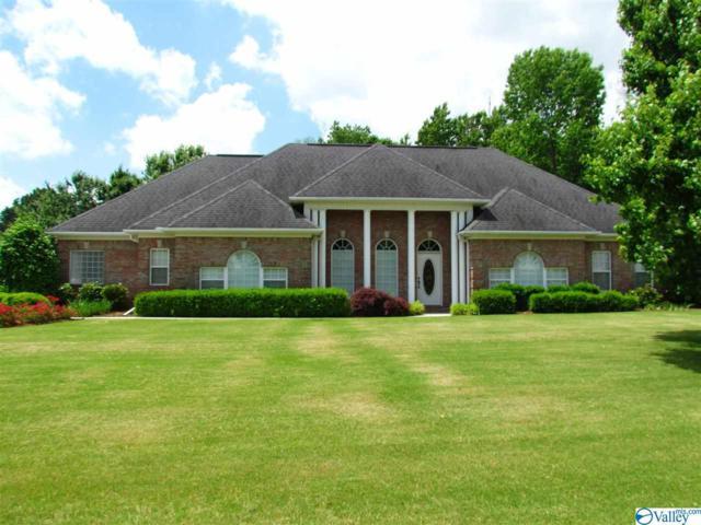 14555 Doe Run, Harvest, AL 35758 (MLS #1119656) :: Eric Cady Real Estate