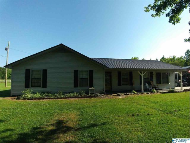 132 Liberty Road, Danville, AL 35619 (MLS #1119685) :: Capstone Realty