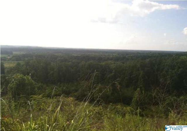 3 Indian Hills Road, Decatur, AL 35603 (MLS #1119708) :: Capstone Realty
