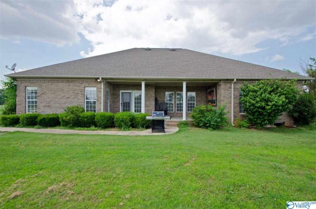 172 Pike Parvin Road, Meridianville, AL 35759 (MLS #1119709) :: Eric Cady Real Estate