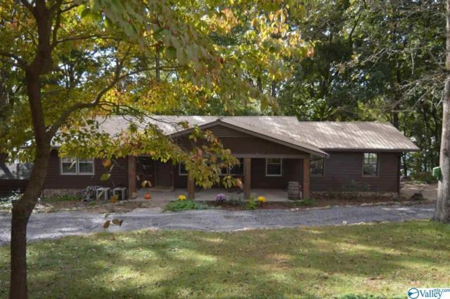 1806 Roseberry Drive, Scottsboro, AL 35769 (MLS #1119714) :: Capstone Realty
