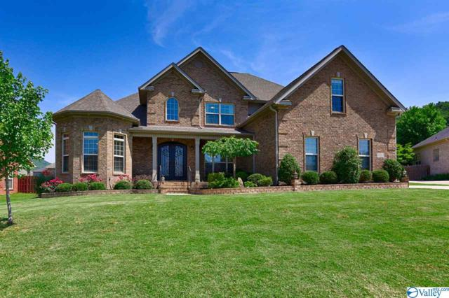 7053 Jacks Creek Lane, Owens Cross Roads, AL 35763 (MLS #1119766) :: Intero Real Estate Services Huntsville