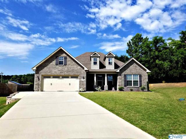 107 Churchill Terrace, Decatur, AL 35603 (MLS #1119792) :: Amanda Howard Sotheby's International Realty