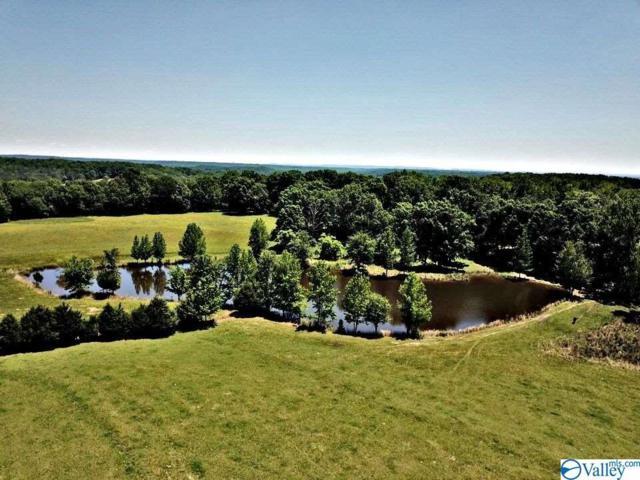 4421 Danville Road, Decatur, AL 35603 (MLS #1119802) :: Weiss Lake Realty & Appraisals